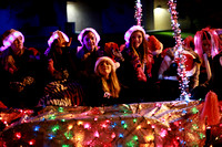 Twinkle Light Parade, 2014